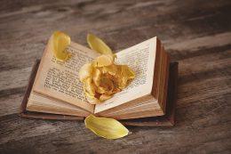 book-1291164_640